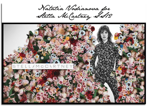 The Eco star, Stella Mc Cartney