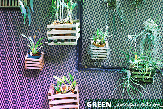 Green inspiration #86_green interior | exterior