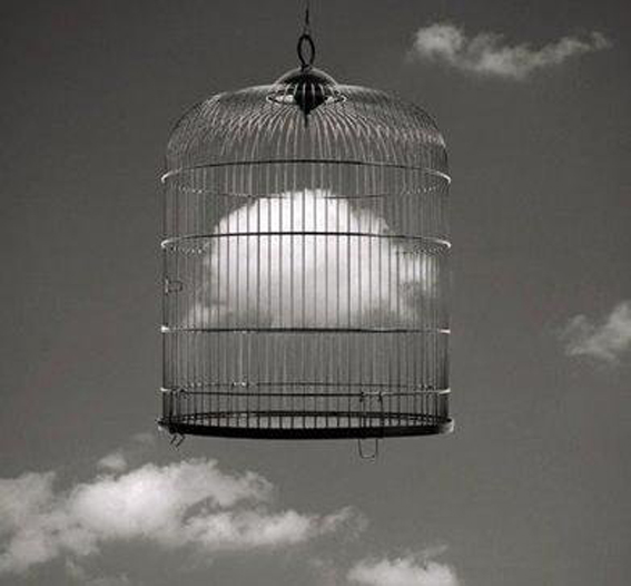 cloud in the cage