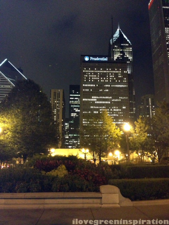 ilovegreeninspiration_millenium_park_fountain_chicago_02 copy