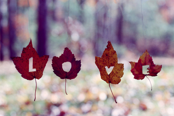 ilovegreeninspiration_autumn-conceptual-leaves-love-photography-favim-com-114670_large