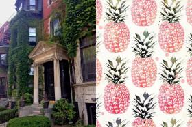 ilovegreeninspiration_interior_tropical_boston_10 copy