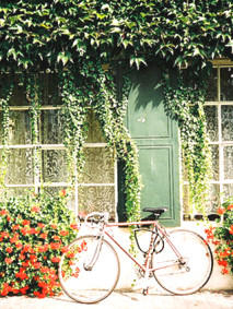 ilovegreeninspiration_bicycle-bike-floral-flowers-green