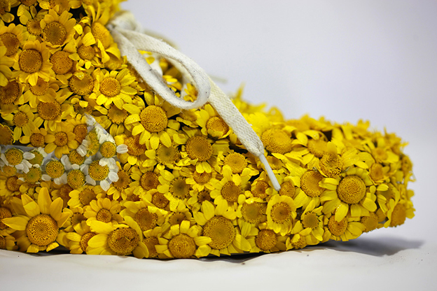 ilovegreeninspiration-just-groth-it-Nike_yellow_shoes_flowers_1