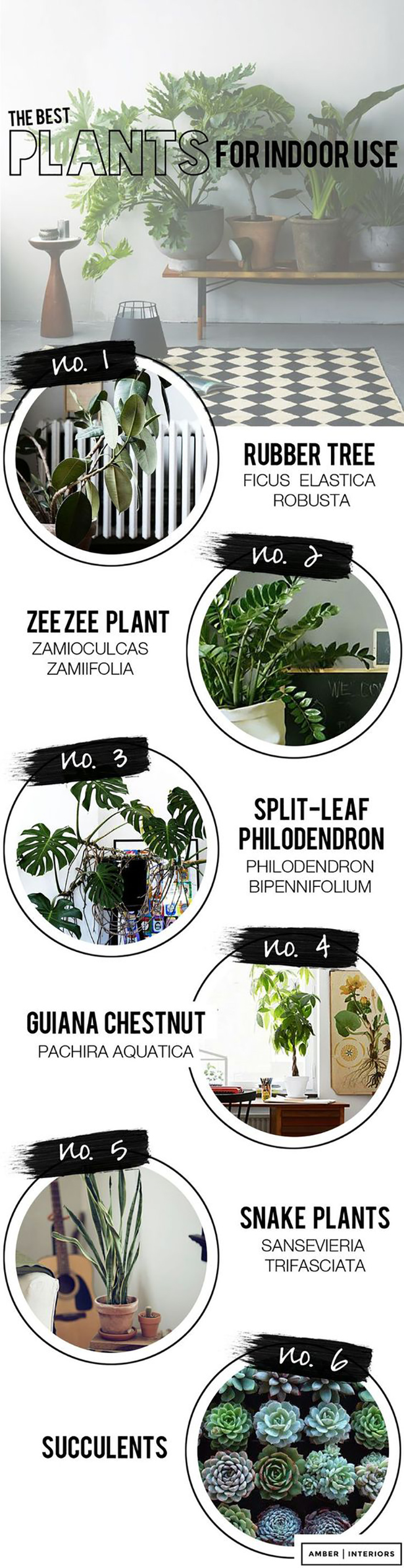 ilovegreeninspiration-fashion.agazine-marinellarauso-decoraninteriorwithplants-11