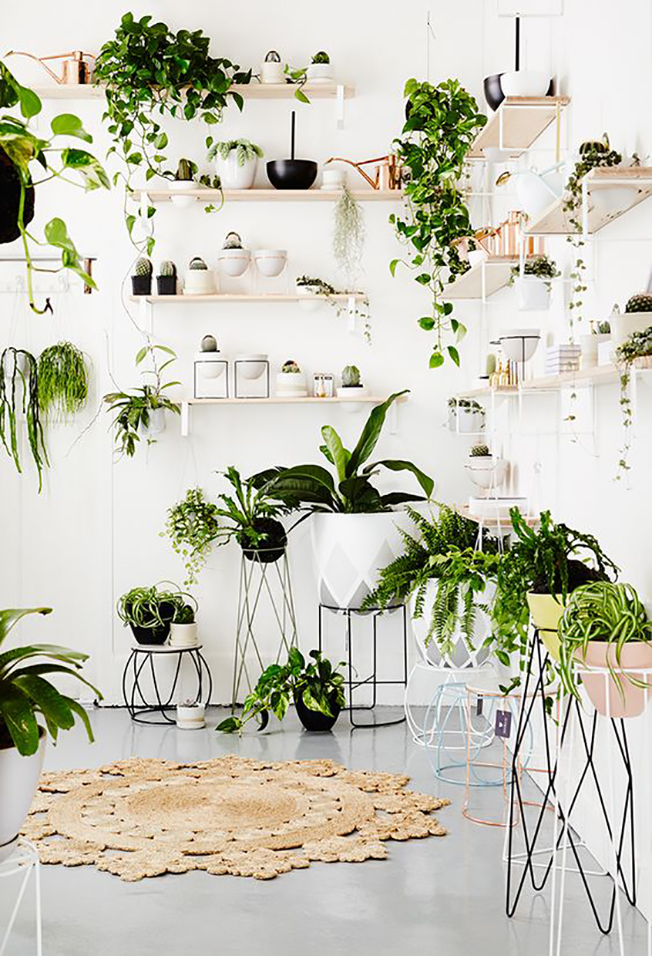 ilovegreeninspiration-fashion,agazine-marinellarauso-decoraninteriorwithplants-08