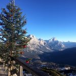 christmas tree, green inspiration, cortina