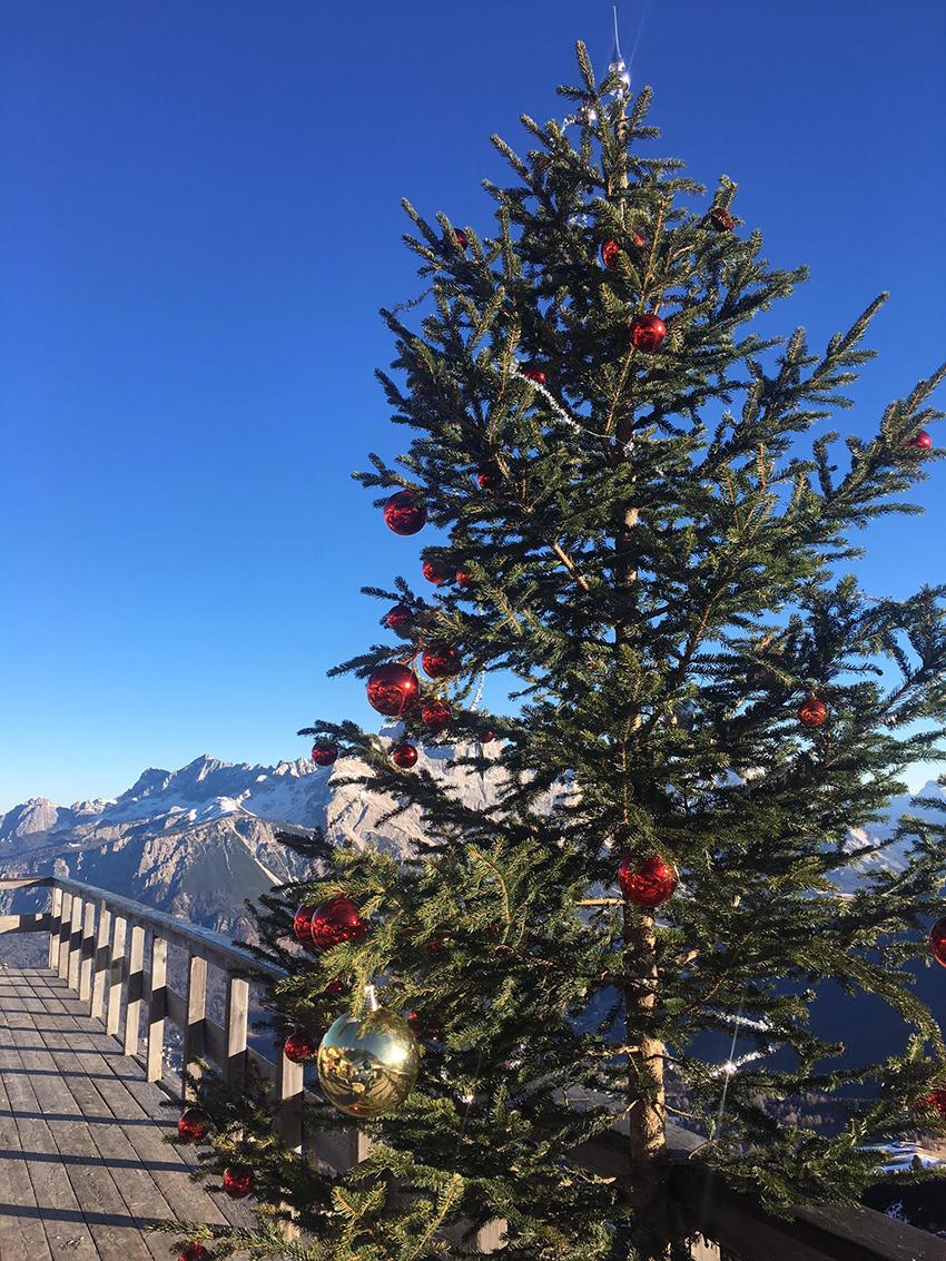 christmas tree, green inspiration, cortina