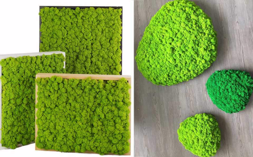 Natura in casa, moss roma, abito verde, parete vegetale, consigli idee per arredare, green living wall, vegetal wall, nature at home