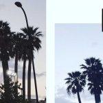 instagram algortitmo, migliori app per modificare le foto, parametri vscocam, marinella rauso, ilovegreeninspiration