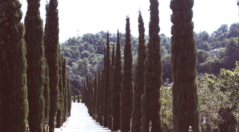 Catalunya experience, Canroda 1867, gastrotrip in catalunya, DO Alella, visit costa brava